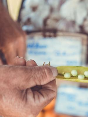 Einkaufen: Mehr Dorfladen, weniger Konsumtempel